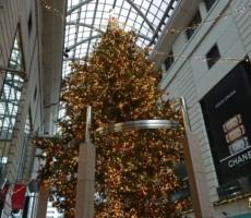 カバとクリスマス