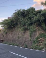 福岡県北九州市小倉北区富野台(土地) 間取り図