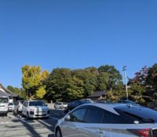 秋晴れと紅葉と飛行機